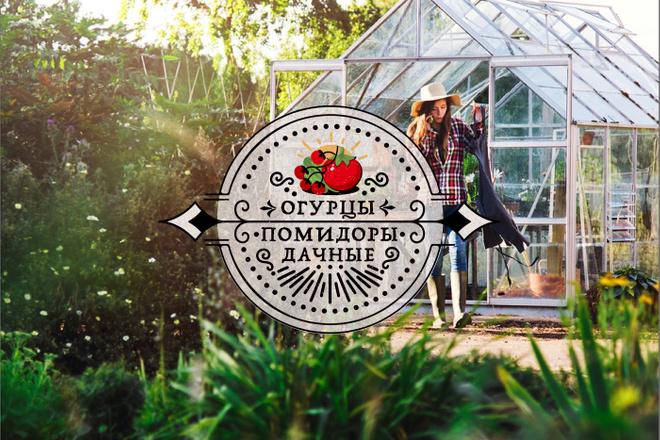 Винтажный или Ретро логотип 16 - kwork.ru