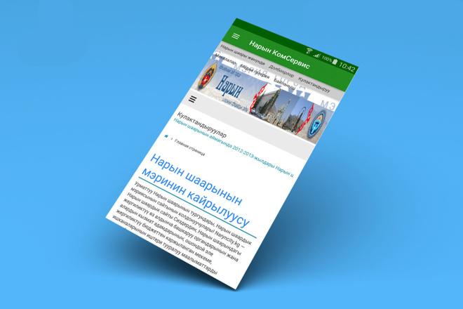 Конвертирую Ваш сайт в удобное Android приложение + публикация 68 - kwork.ru