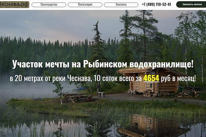 Создам лендинг на вордпресс быстро 11 - kwork.ru