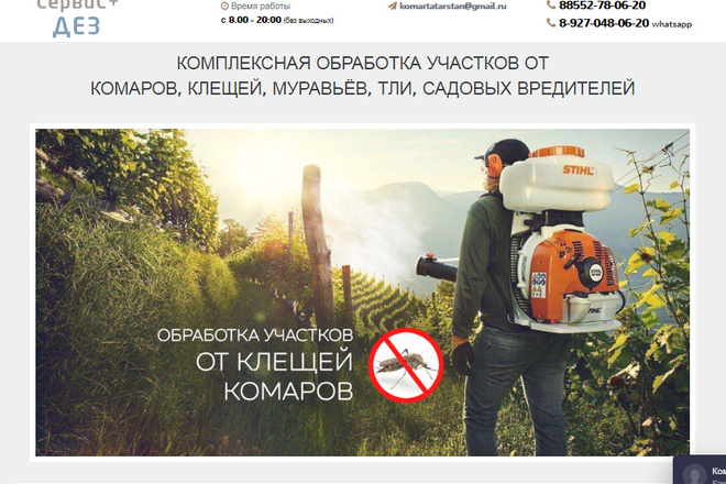 Качественная копия лендинга с установкой панели редактора 4 - kwork.ru