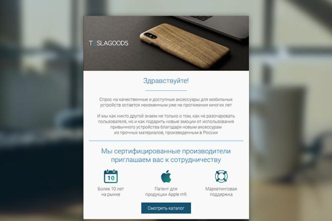Html-письмо для E-mail рассылки 117 - kwork.ru