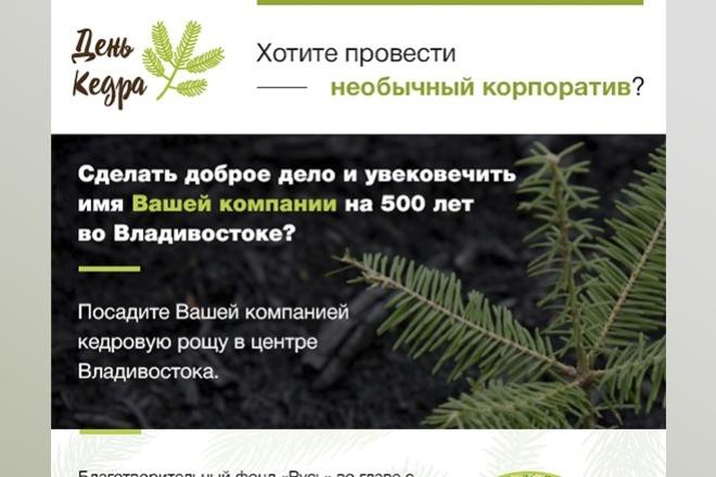 Дизайн Email письма, рассылки. Веб-дизайн 9 - kwork.ru