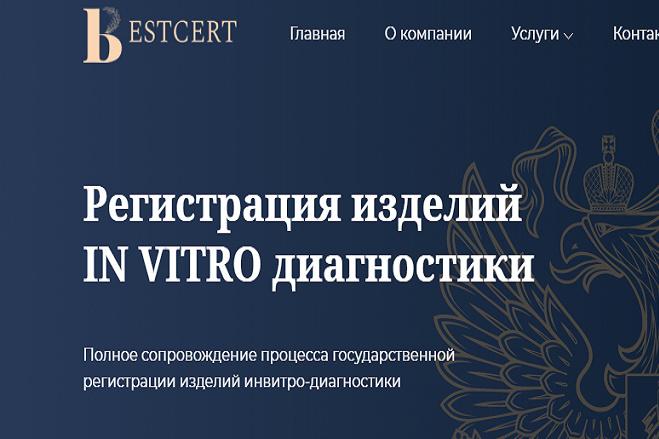 Создам Логотип для вашего Сайта + Favicon в подарок 2 - kwork.ru