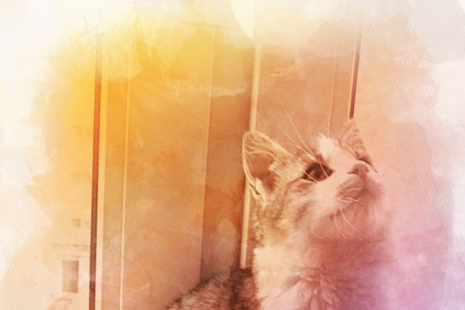 Обработаю фото для соц. сетей. Эффекты, коррекция, рамки. 10 фото 2 - kwork.ru
