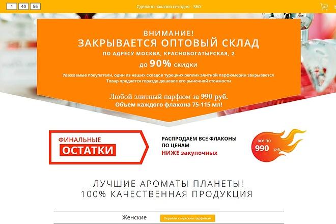 Скопирую Landing Page, Одностраничный сайт 91 - kwork.ru