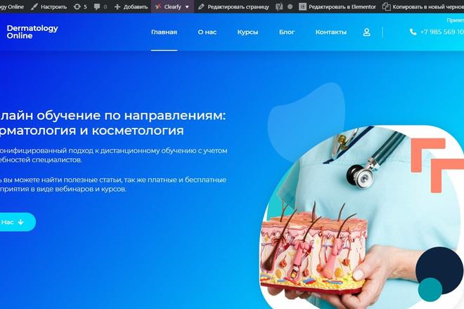 Сделаю классный Лендинг на Elementor Pro 33 - kwork.ru