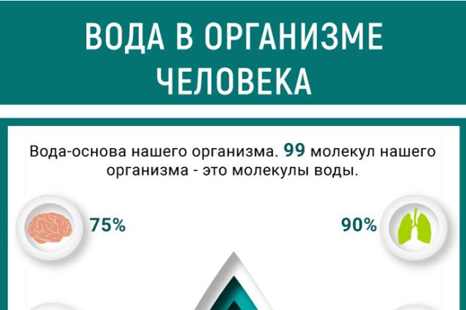 Инфографика для сайта 7 - kwork.ru