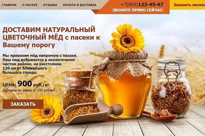 Landing page заказать фриланс удаленная работа на дому через интернет украина