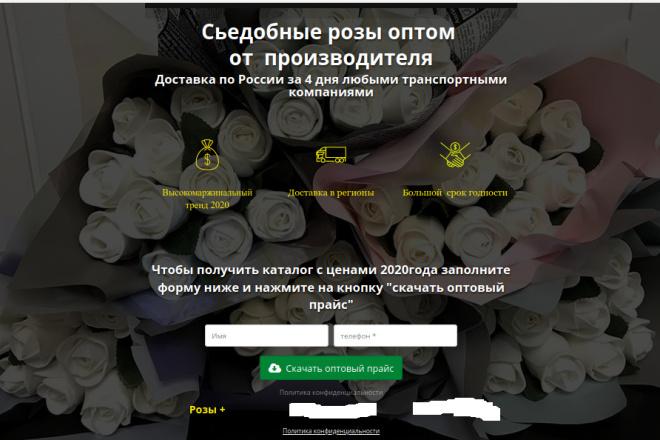 Скопирую страницу любой landing page с установкой панели управления 94 - kwork.ru