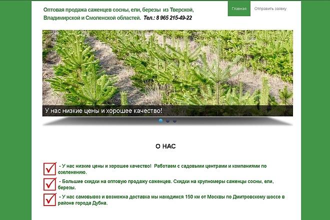Создам сайт-визитку недорого 20 - kwork.ru