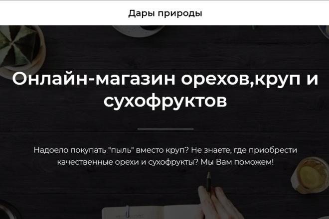 Создам лендинг на платформе Тильда 6 - kwork.ru