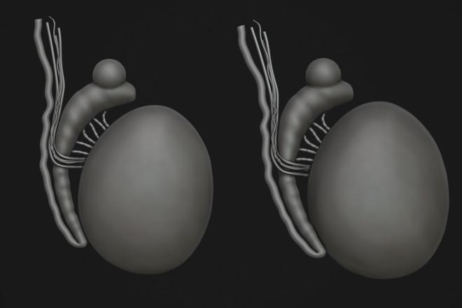 Создам 3D модель для печати или чпу 12 - kwork.ru