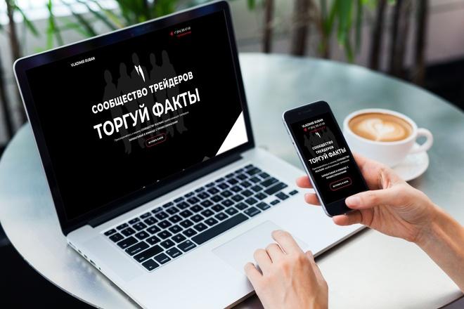 Продающий Landing Page под ключ 20 - kwork.ru