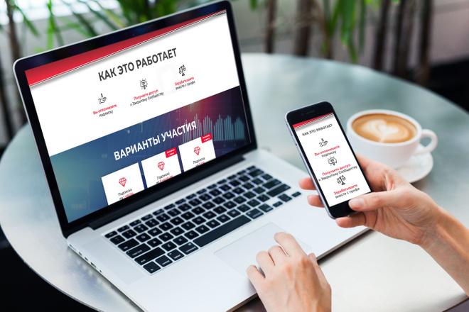 Продающий Landing Page под ключ 19 - kwork.ru