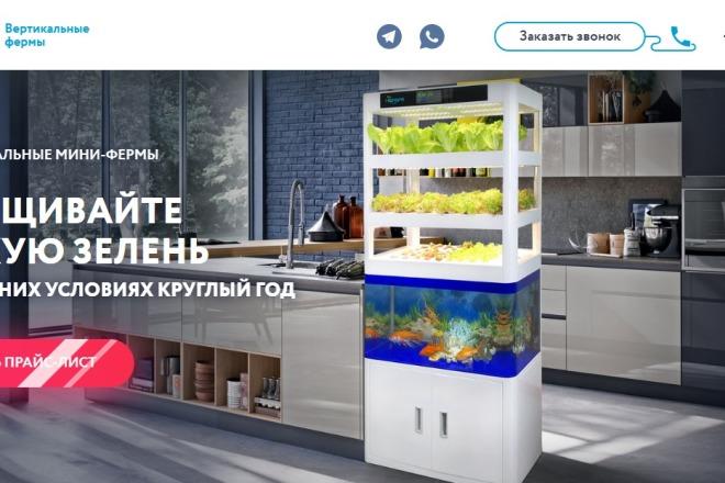 Делаю копии landing page 55 - kwork.ru