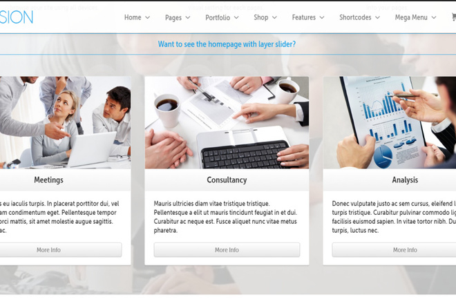 Тема Envision для WordPress на русском с обновлениями и плагинами 1 - kwork.ru
