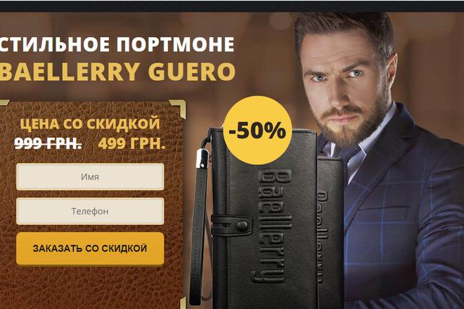 Качественная копия лендинга с установкой панели редактора 47 - kwork.ru