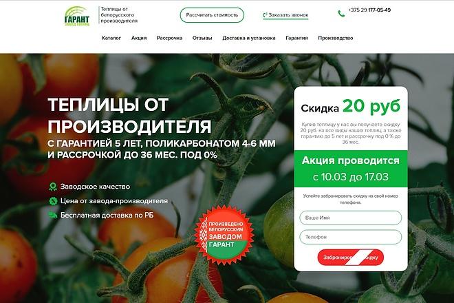 Скопирую Landing Page, Одностраничный сайт 78 - kwork.ru