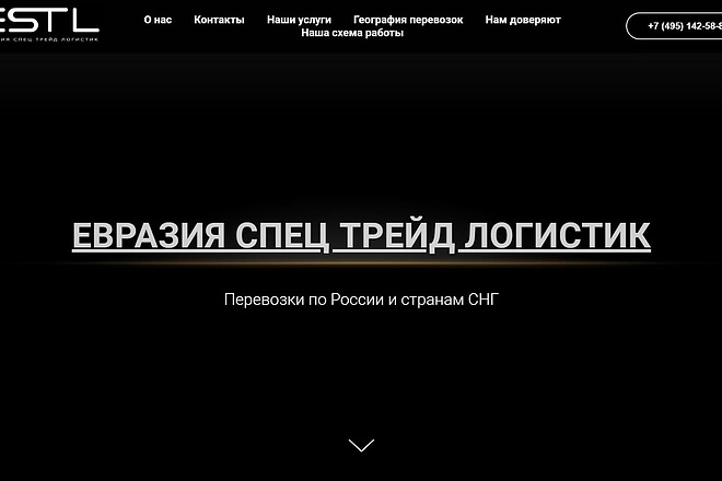 Создаю Лендинг на Тильде под ключ 57 - kwork.ru