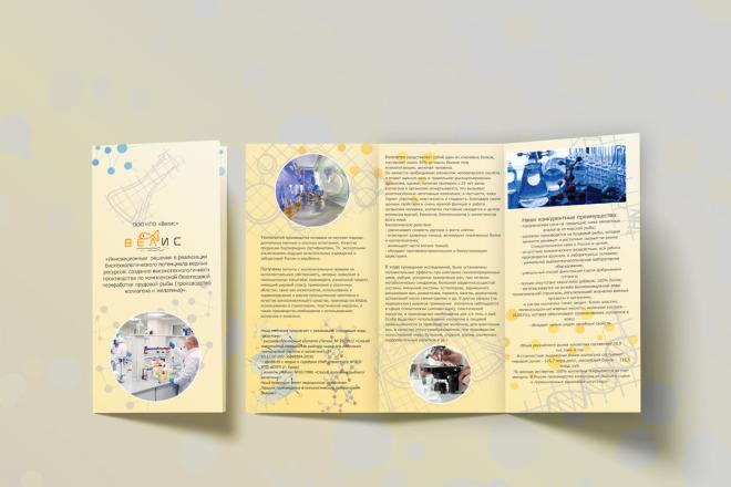 Разработаю макет Брошюры, буклета 2 - kwork.ru