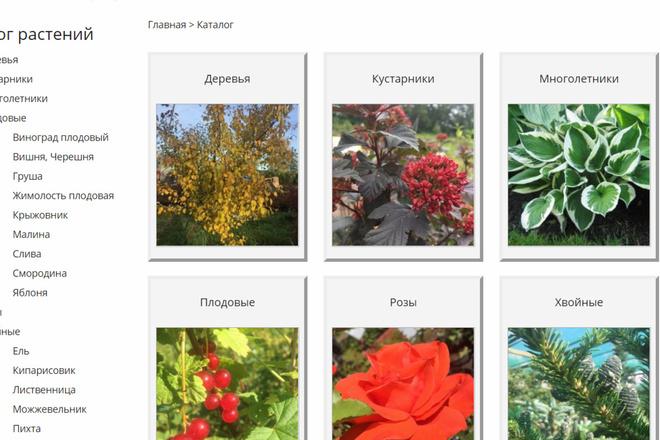 Доработка верстки и адаптация под мобильные устройства 20 - kwork.ru