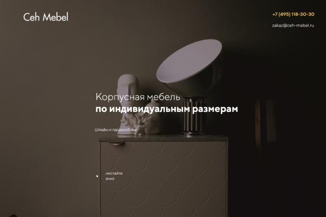 Копия сайта, landing page + админка и настройка форм на почту 40 - kwork.ru