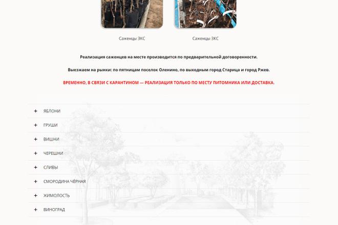Создание красивого адаптивного лендинга на Вордпресс 6 - kwork.ru