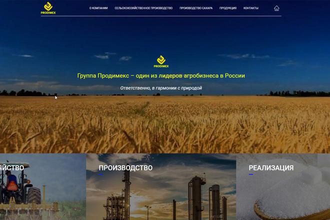 Скопирую почти любой сайт, landing page под ключ с админ панелью 27 - kwork.ru