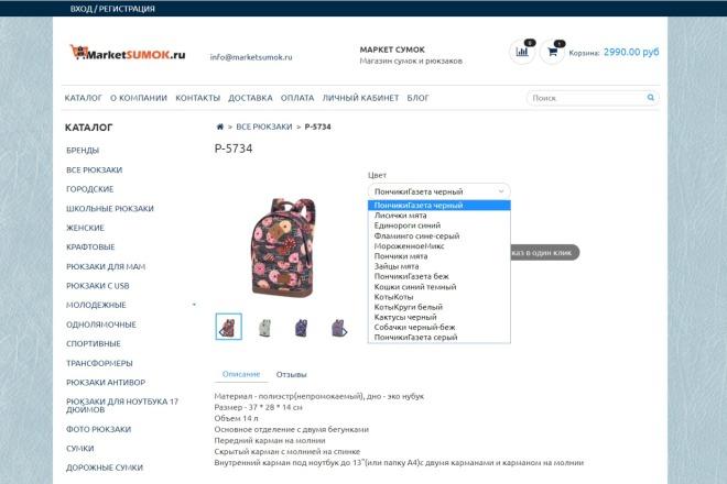 Профессионально создам интернет-магазин на insales + 20 дней бесплатно 16 - kwork.ru