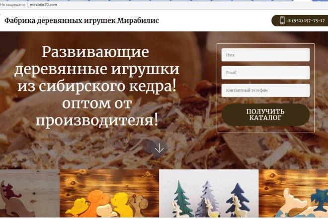 Создам лендинги, сайты, CMS 9 - kwork.ru