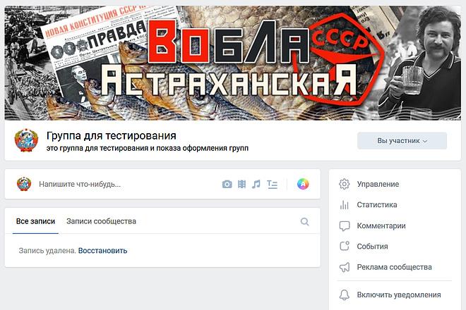Оформлю группу ВК - обложка, баннер, аватар, установка 22 - kwork.ru