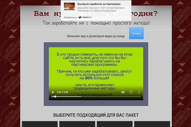 Скопирую Landing Page, Одностраничный сайт 40 - kwork.ru