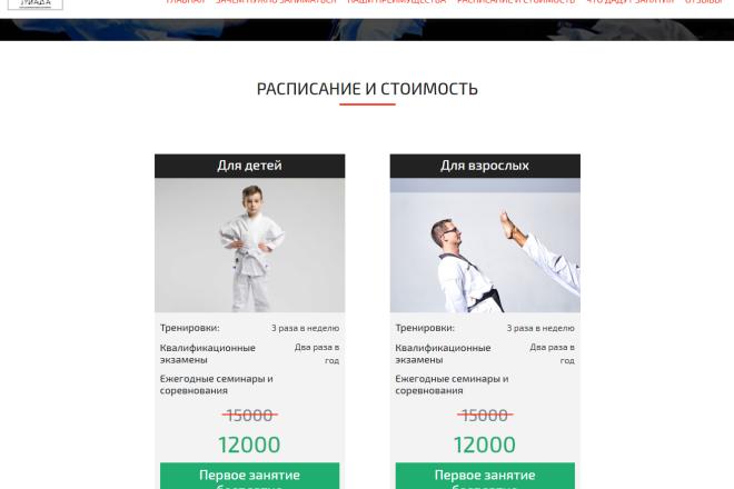 Сайт под ключ. Landing Page. Backend 285 - kwork.ru