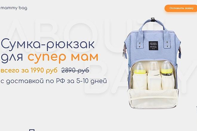 Скопирую Landing Page, Одностраничный сайт 102 - kwork.ru