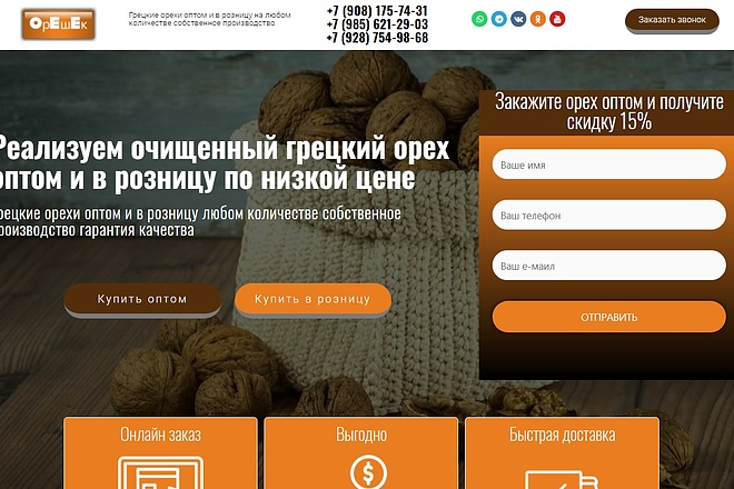 Создам лендинг на вордпресс быстро 14 - kwork.ru