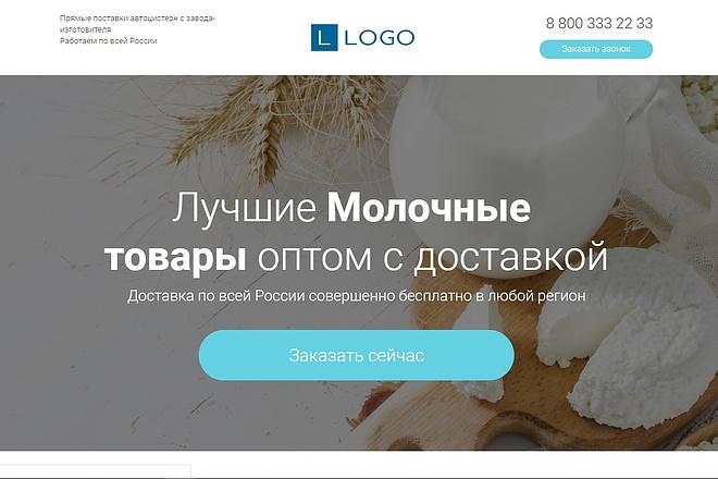 Скопирую Landing Page, Одностраничный сайт 56 - kwork.ru