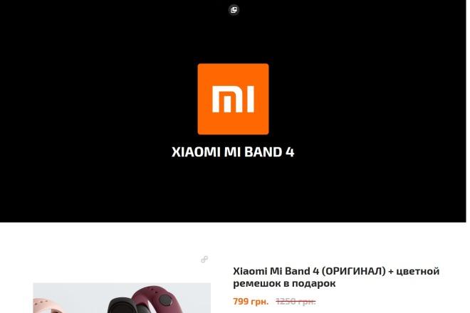 Копирование Landing Page 11 - kwork.ru