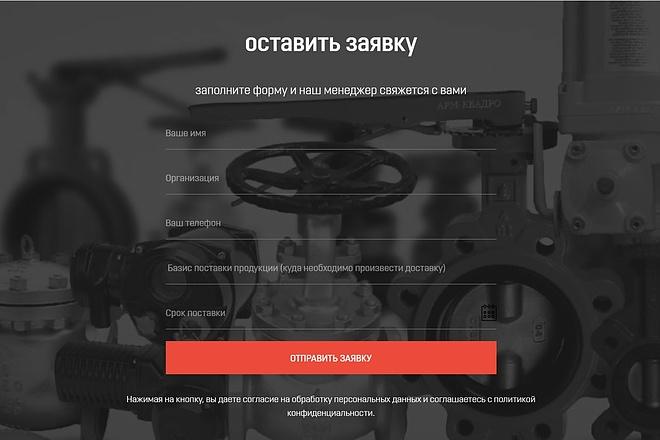 Создание сайта - Landing Page на Тильде 147 - kwork.ru