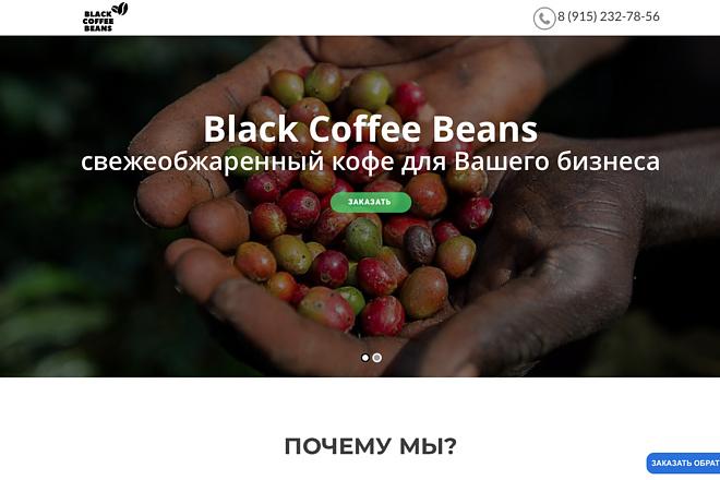 Создание одностраничника на Wordpress 137 - kwork.ru