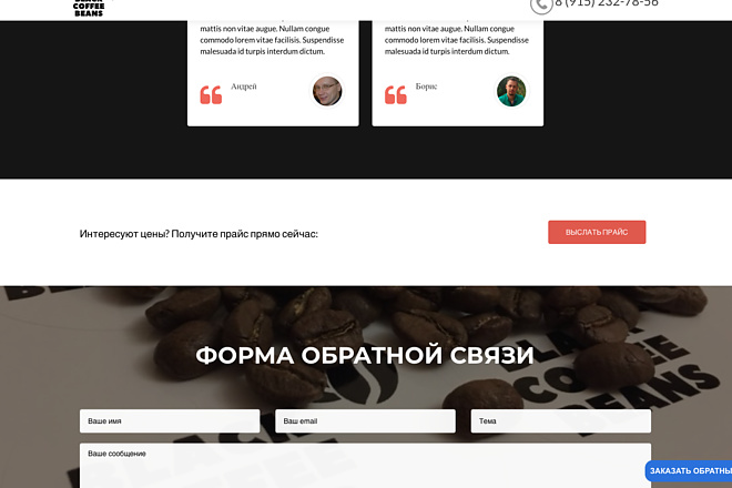 Создание одностраничника на Wordpress 136 - kwork.ru