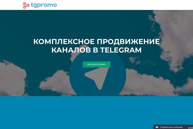Создание одностраничника на Wordpress 134 - kwork.ru
