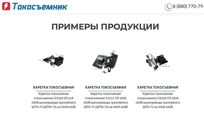 Создание одностраничника на Wordpress 91 - kwork.ru