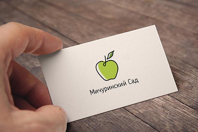 Создам качественный логотип 13 - kwork.ru
