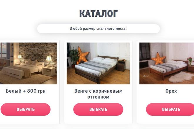 Качественная копия лендинга с установкой панели редактора 76 - kwork.ru