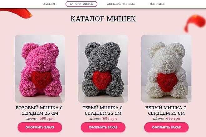 Сделаю копию Landing Page c настройкой 2 - kwork.ru