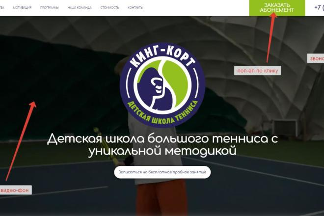Лендинг для любых целей на Wordpress 12 - kwork.ru