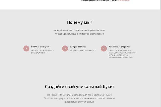 Создам интернет-магазин на Тильда 5 - kwork.ru