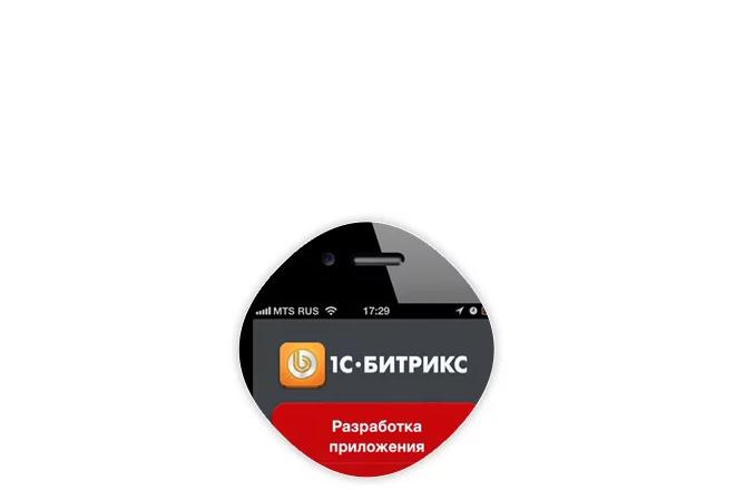 Мобильное приложение под ключ на iOS для магазина Битрикс 2 - kwork.ru