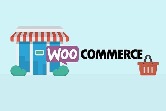 50 премиум тем WP для интернет-магазина на WooCommerce 21 - kwork.ru