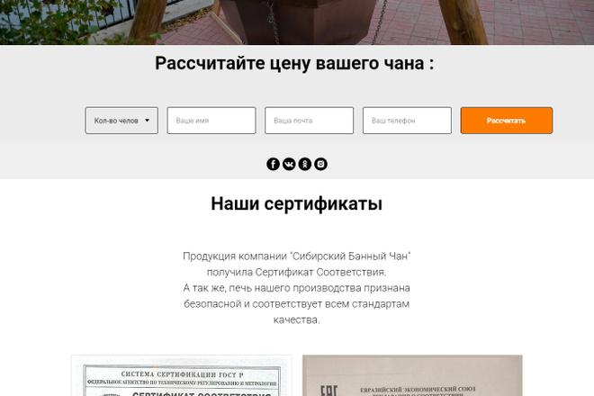 Копирование Landing Page 41 - kwork.ru